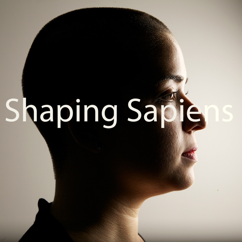 Shaping Sapiens Album Cover Art